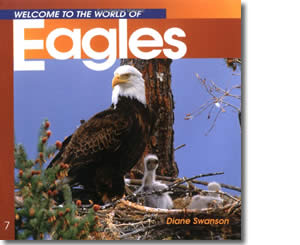 Welcome to the World of Eagles - Alaska Books for Kids