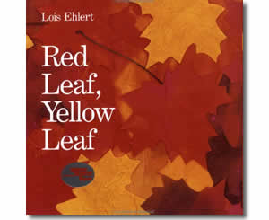 Red Leaf, Yellow Leaf - Fun Fall Books for Kids