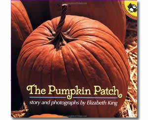 The Pumpkin Patch - Fun Fall Books for Kids