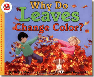 Why Do Leaves Change Color? - Fun Fall Books for Kids