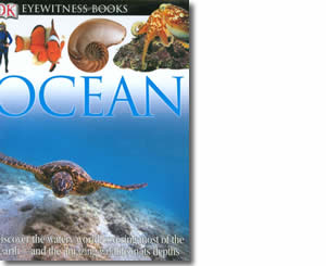 Ocean  - Summer Books for Kids